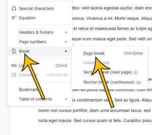 how to create a page break in Google Docs