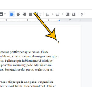 how to delete page numbers in Google Docs