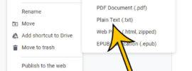how to convert Google Docs to plain text