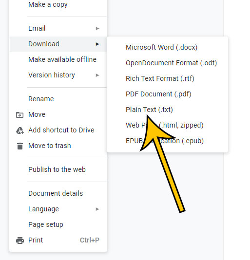 how to download a Google Docs file as plain text