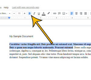how to unbold text in Google Docs