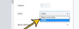 how to print Google Docs in black and white
